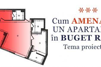 Cum amenajăm un apartament în buget redus – Tema proiectului